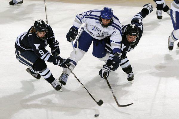 ice hockey management software